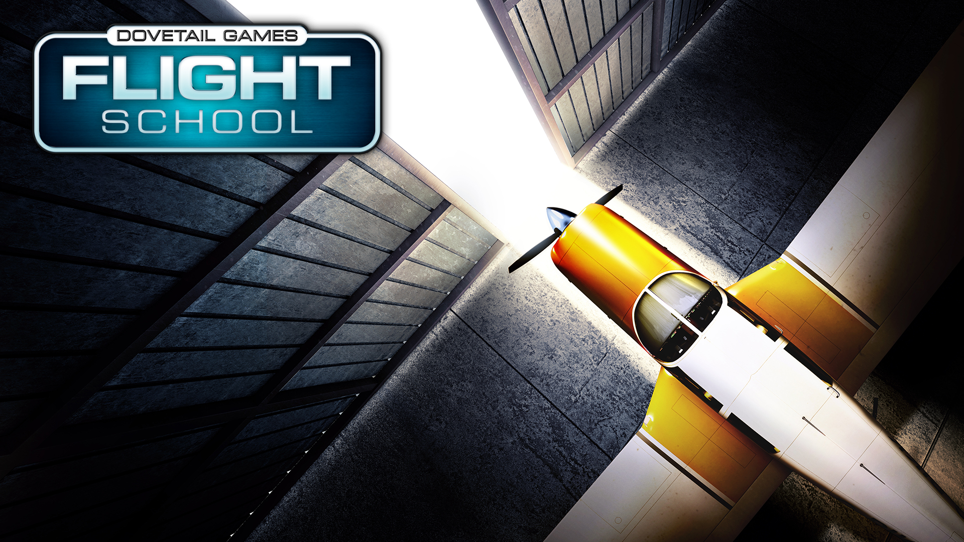 dovetail-games-flight-school-ilk-tanitim