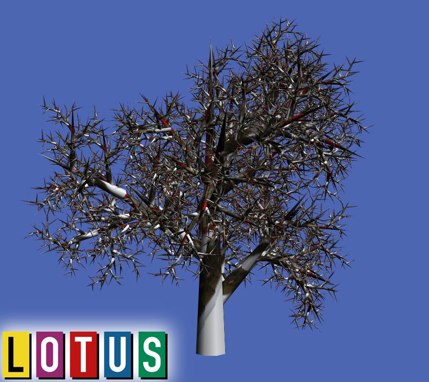 lotus-simulator-3d-trees-wip